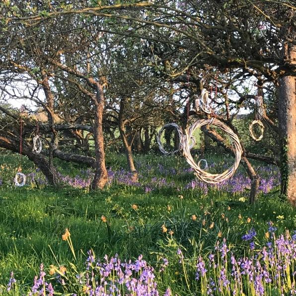 Renewal orchard 3